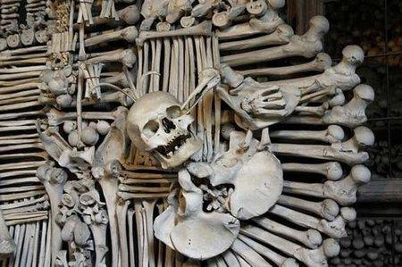 450_bone_chruch_05